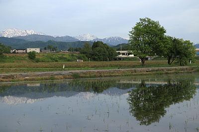 上中島画像